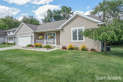 Kent County, Ottawa County Single Family Home For Sale: 3265 Brianna Street NW