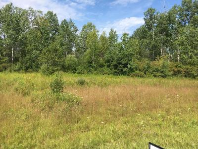Evart Residential Lots & Land For Sale: 00 30th Avenue
