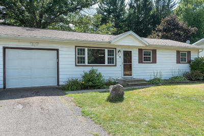 Single Family Home For Sale: 178 Summit Drive