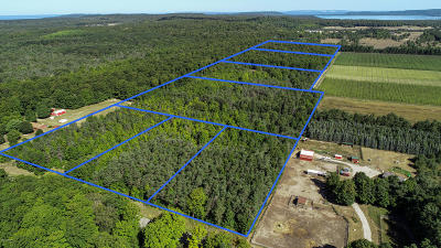 Benzie County, Charlevoix County, Clare County, Emmet County, Grand Traverse County, Kalkaska County, Lake County, Leelanau County, Manistee County, Mason County, Missaukee County, Osceola County, Roscommon County, Wexford County Residential Lots & Land For Sale: Tbd W Beeman Road