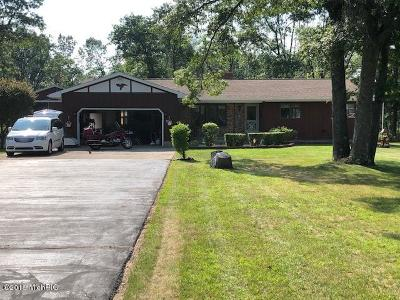 Newaygo Single Family Home For Sale: 7905 Basswood