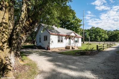 Harbert Single Family Home For Sale: 13689 Shamrock Lane