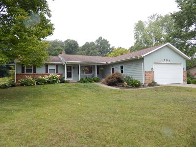 Caledonia Single Family Home For Sale: 7551 Thornapple River Drive SE