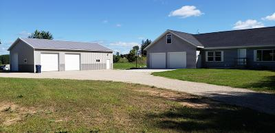 Newaygo Single Family Home For Sale: 6910 Bingham Avenue