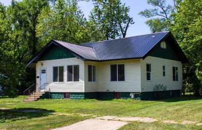 Benton Harbor Single Family Home For Sale: 846 McAllister Avenue