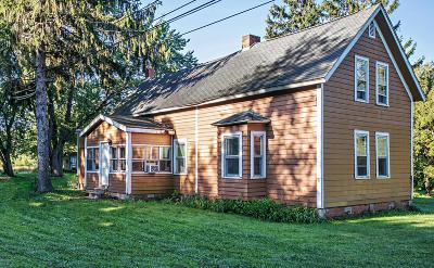 Benton Harbor Single Family Home For Sale: 2880 Coloma Road