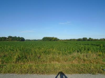Bridgman Residential Lots & Land For Sale: Date Road