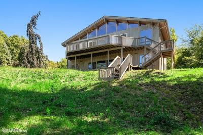 Coloma Single Family Home For Sale: 7188 Blue Star Highway