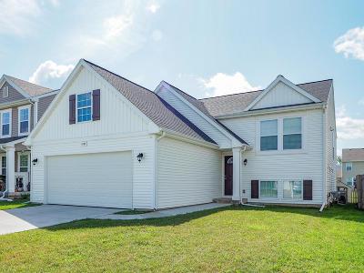 Vicksburg Single Family Home For Sale: 1231 Ellery Grove Court