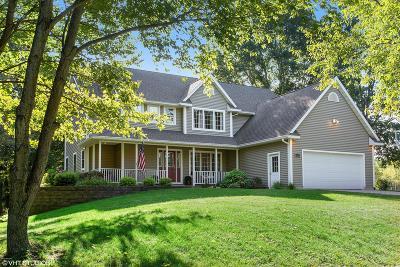Benton Harbor Single Family Home For Sale: 615 Pine Hills Lane