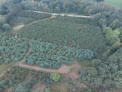 Benzie County, Charlevoix County, Clare County, Emmet County, Grand Traverse County, Kalkaska County, Lake County, Leelanau County, Manistee County, Mason County, Missaukee County, Osceola County, Roscommon County, Wexford County Residential Lots & Land For Sale: 0000 E Wilson Road