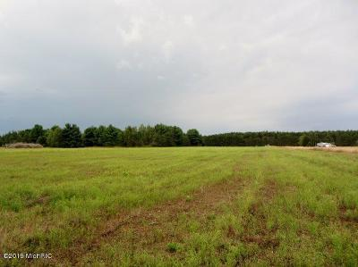 Benzie County, Charlevoix County, Clare County, Emmet County, Grand Traverse County, Kalkaska County, Lake County, Leelanau County, Manistee County, Mason County, Missaukee County, Osceola County, Roscommon County, Wexford County Residential Lots & Land For Sale: 4209 B Sylvan Road