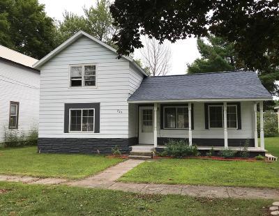 Howard City Single Family Home For Sale: 229 Orton Street