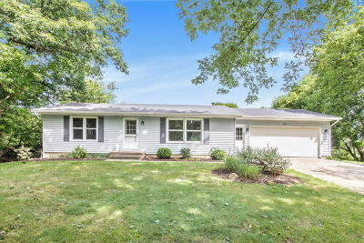 Rockford Single Family Home For Sale: 7515 11 Mile Road NE