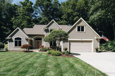 Ottawa County Single Family Home For Sale: 17621 Duneside Drive