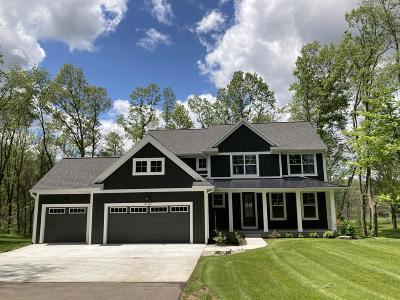 Berrien County, Branch County, Calhoun County, Cass County, Hillsdale County, Jackson County, Kalamazoo County, St. Joseph County, Van Buren County Single Family Home For Sale: 9156 S 8th Street