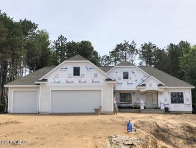 Grand Haven, Spring Lake, Ferrysburg Single Family Home For Sale: 18107 Wildwood Springs Parkway #55