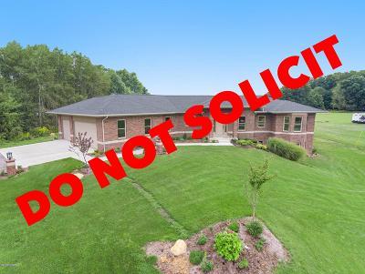 Grand Rapids Single Family Home For Sale: 12066 Lamac Drive