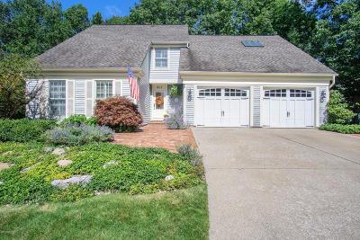 Ludington Single Family Home For Sale: 901 Holly Lane