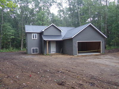 Grand Haven, Spring Lake Single Family Home For Sale: 14114 Annissa Lane
