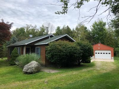 Benzie County, Charlevoix County, Clare County, Emmet County, Grand Traverse County, Kalkaska County, Lake County, Leelanau County, Manistee County, Mason County, Missaukee County, Osceola County, Roscommon County, Wexford County Single Family Home For Sale: 6489 Lakeshore Road