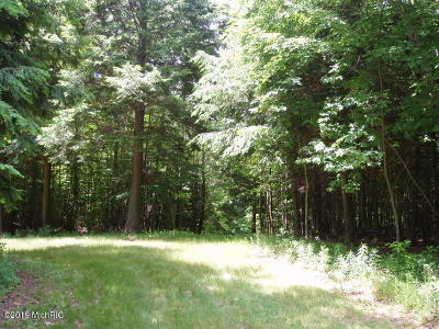 Benzie County, Charlevoix County, Clare County, Emmet County, Grand Traverse County, Kalkaska County, Lake County, Leelanau County, Manistee County, Mason County, Missaukee County, Osceola County, Roscommon County, Wexford County Residential Lots & Land For Sale: Valleyview Drive