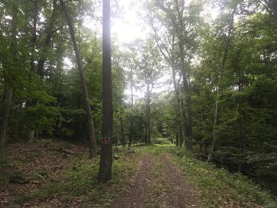 Residential Lots & Land For Sale: S Lakeview Dr #B