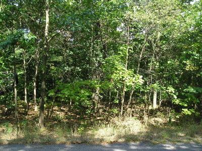 New Buffalo Residential Lots & Land For Sale: 19589 Oak Drive