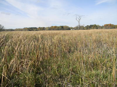 Jackson County Residential Lots & Land For Sale: Brooklyn Road
