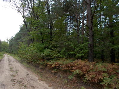 Benzie County, Charlevoix County, Clare County, Emmet County, Grand Traverse County, Kalkaska County, Lake County, Leelanau County, Manistee County, Mason County, Missaukee County, Osceola County, Roscommon County, Wexford County Residential Lots & Land For Sale: 00 N 3rd Road