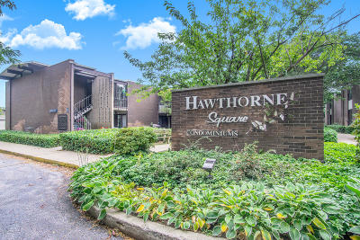 Grand Haven, Spring Lake Condo/Townhouse For Sale: 805 S Despelder Street #18