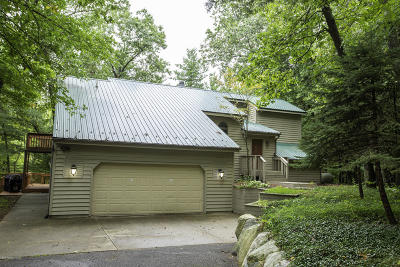 Single Family Home For Sale: 13520 14 Mile Rd.