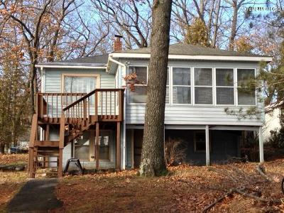 Bitely MI Single Family Home For Sale: $160,000
