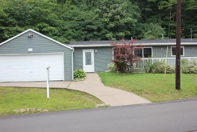 Rockford MI Single Family Home For Sale: $159,900