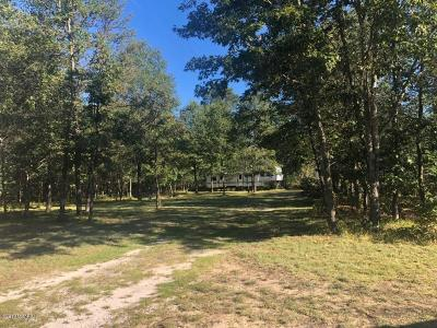 Benzie County, Charlevoix County, Clare County, Emmet County, Grand Traverse County, Kalkaska County, Lake County, Leelanau County, Manistee County, Mason County, Missaukee County, Osceola County, Roscommon County, Wexford County Residential Lots & Land For Sale: 914 E Burke Circle