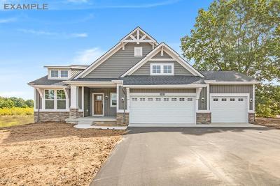 Hudsonville MI Single Family Home For Sale: $349,900