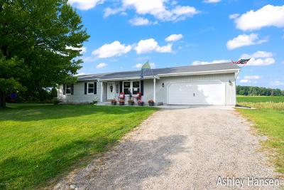 Greenville Single Family Home For Sale: 11815 Hart Street NE