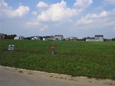 Berrien Springs Residential Lots & Land For Sale: 5972 Vrana Drive