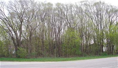 Sodus Residential Lots & Land For Sale: 1317 Nickerson Avenue