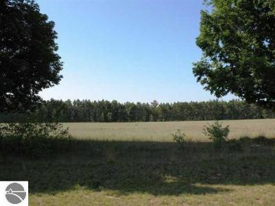 Benzie County Residential Lots & Land For Sale: 1,2,3 Meadowpine Drive
