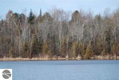 Residential Lots & Land For Sale: W Cedar Lake Road