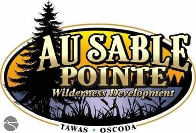 Residential Lots & Land Sold: N Ausable Point Road