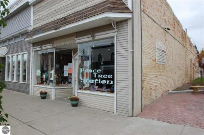 West Branch Commercial For Sale: 308 W Houghton Avenue