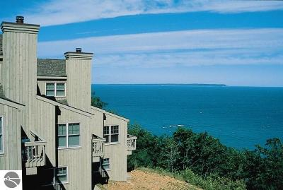 Leelanau County Condo For Sale: 5b Pinnacle Place