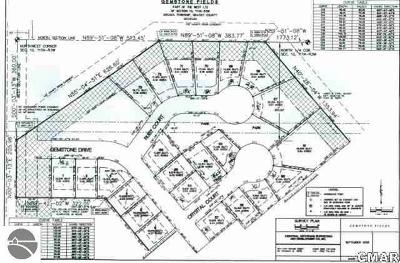 Alma Residential Lots & Land For Sale: 248 Ruby Court
