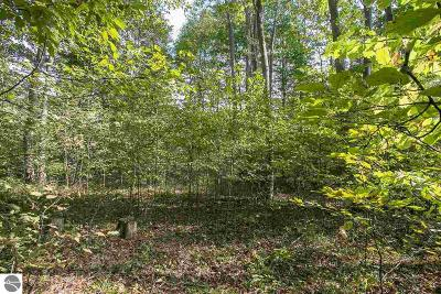 Benzie County Residential Lots & Land For Sale: 1 Crimson King Drive
