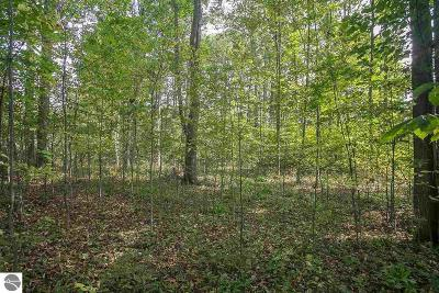 Benzie County Residential Lots & Land For Sale: 2 Crimson King Drive