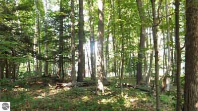 Benzie County Residential Lots & Land For Sale: 5 Tree Tops Lane