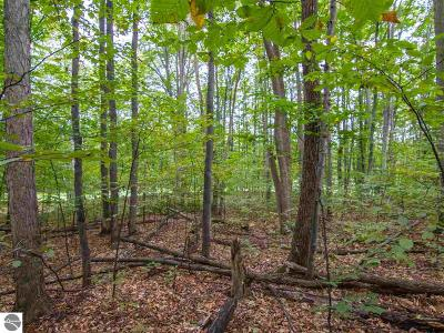 Benzie County Residential Lots & Land For Sale: 000-Unit 13 Mountainwoods Drive