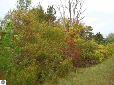 Benzie County Residential Lots & Land For Sale: Michigan Avenue